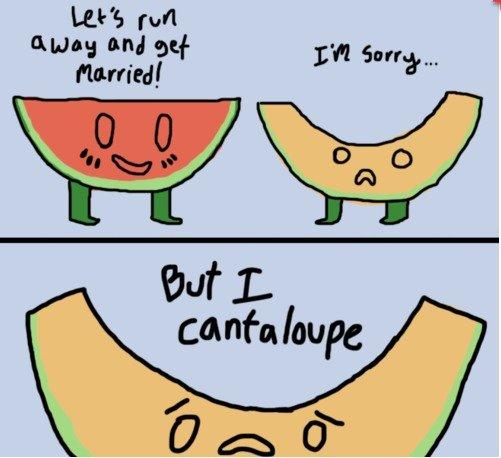 sorry but i cantaloupe