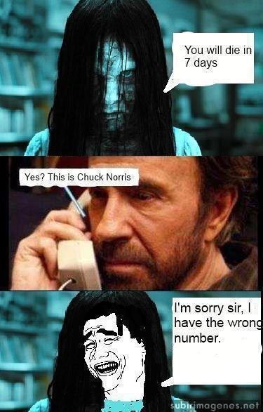 Chuck norris penis