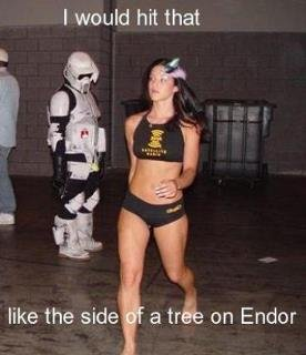 star wars storm trooper endor i'd id hit that like the side of a tree on endor hot chick meme lol lul lolwut wat ha funny ftgdw