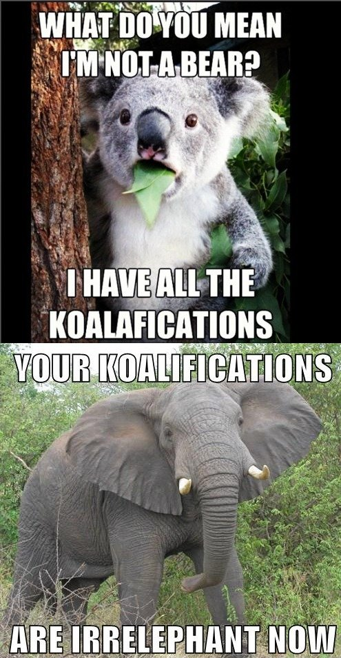 wtf regular truth omg! Lolz LOL lul lulz LOLWUT life humor haha FUNNY ftgdw EPIC entertainment comic blog comedy Awesome all koala elephant koalafications irrelephant