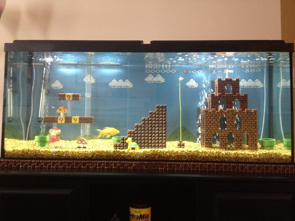 Fish aquarium oscar - Super Mario Fish Tank